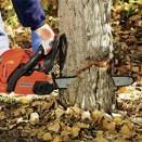 Kácení stromoví a klestí