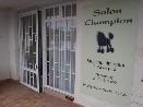 PSÍ SALÓN CHAMPION