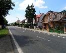 Vilky v obci Osek