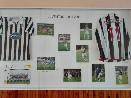Muzeum Pavla Nedvěda ve sportovní hale