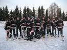 Hokejové utkání