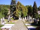 Lipovský hřbitov