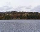 Podzim na rybníce Tajch